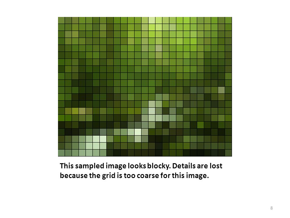 This sampled image looks blocky. Details are lost because the grid is too coarse for this image. 8