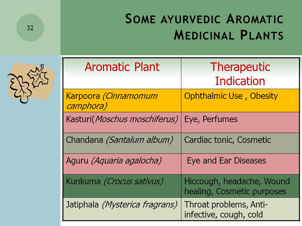 32 Aromatic PlantTherapeutic Indication Karpoora (Cinnamomum camphora) Ophthalmic Use, Obesity Kasturi(Moschus moschiferus)Eye, Perfumes Chandana (Santalum album)Cardiac tonic, Cosmetic Aguru (Aquaria agalocha) Eye and Ear Diseases Kunkuma (Crocus sativus)Hiccough, headache, Wound healing, Cosmetic purposes Jatiphala (Mysterica fragrans)Throat problems, Anti- infective, cough, cold S OME AYURVEDIC A ROMATIC M EDICINAL P LANTS