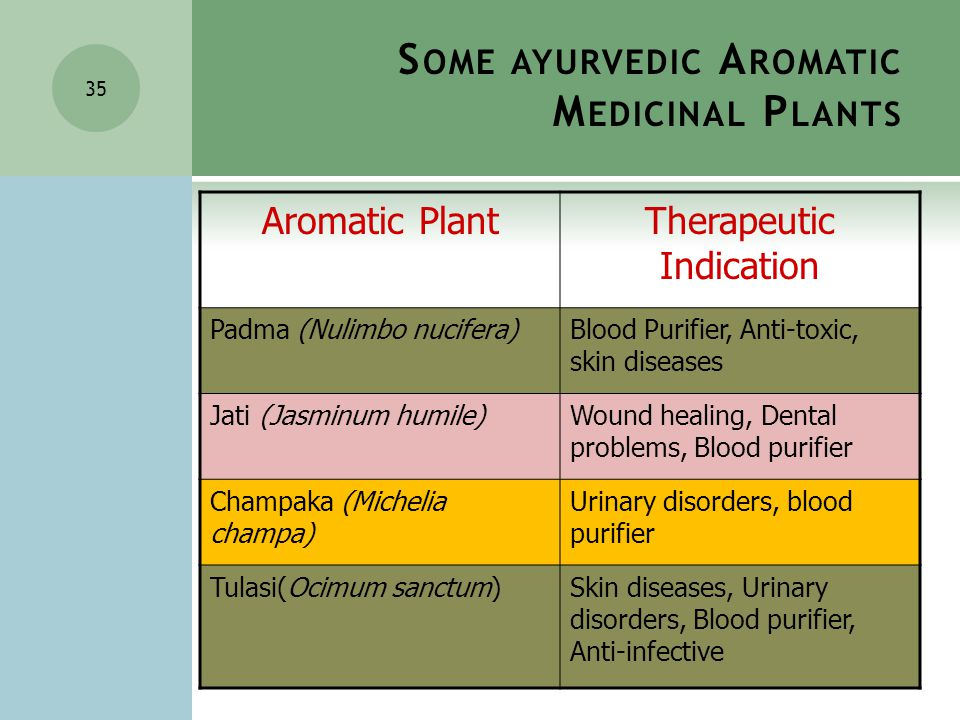 35 Aromatic PlantTherapeutic Indication Padma (Nulimbo nucifera)Blood Purifier, Anti-toxic, skin diseases Jati (Jasminum humile)Wound healing, Dental problems, Blood purifier Champaka (Michelia champa) Urinary disorders, blood purifier Tulasi(Ocimum sanctum)Skin diseases, Urinary disorders, Blood purifier, Anti-infective S OME AYURVEDIC A ROMATIC M EDICINAL P LANTS