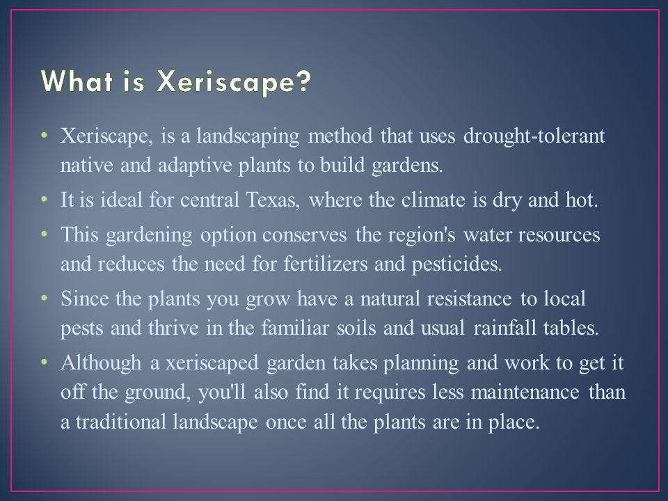 Xeriscape, is a landscaping method that uses drought-tolerant native and adaptive plants to build gardens.