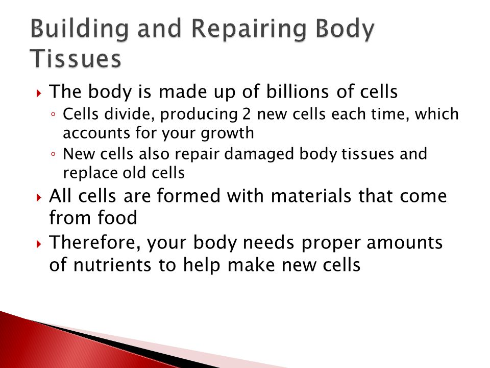  The body is made up of billions of cells ◦ Cells divide, producing 2 new cells each time, which accounts for your growth ◦ New cells also repair damaged body tissues and replace old cells  All cells are formed with materials that come from food  Therefore, your body needs proper amounts of nutrients to help make new cells