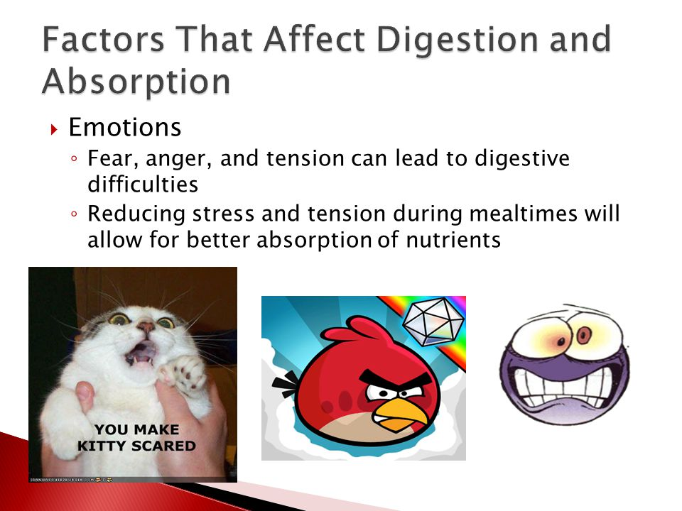  Emotions ◦ Fear, anger, and tension can lead to digestive difficulties ◦ Reducing stress and tension during mealtimes will allow for better absorpti