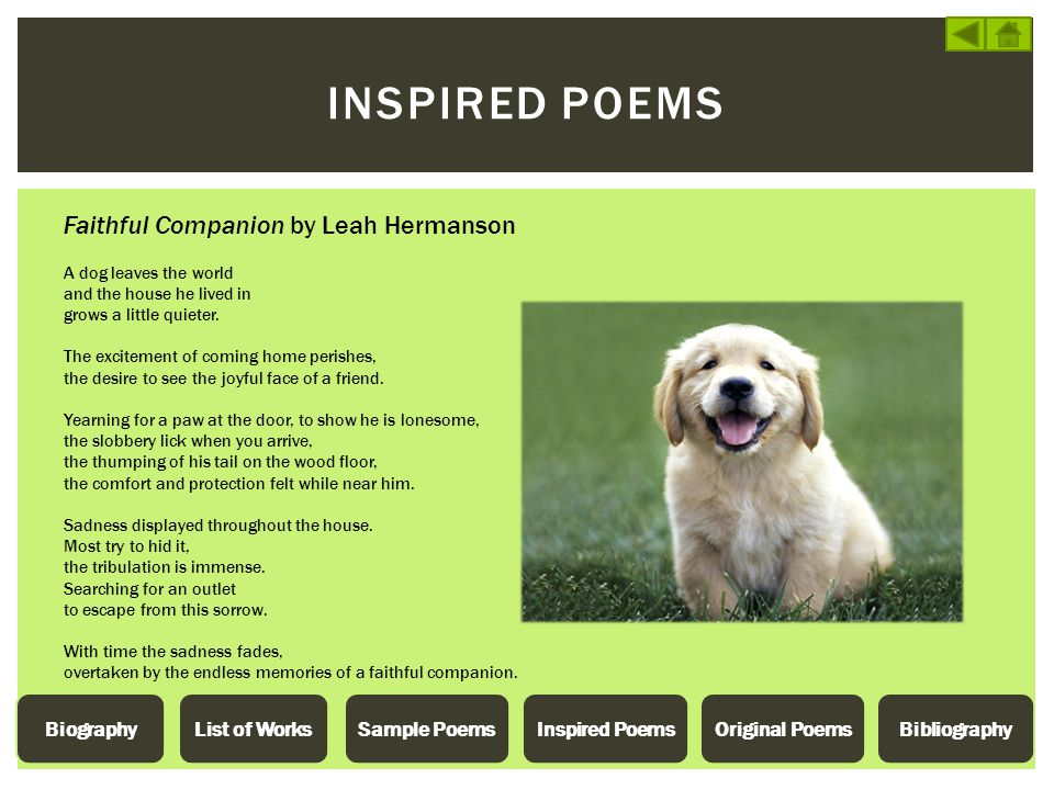 INSPIRED POEMS Faithful Companion by Leah Hermanson A dog leaves the world and the house he lived in grows a little quieter. The excitement of coming