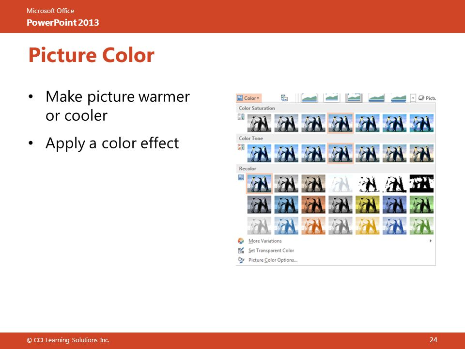 Microsoft Office PowerPoint 2013 Picture Color 24 © CCI Learning Solutions Inc.