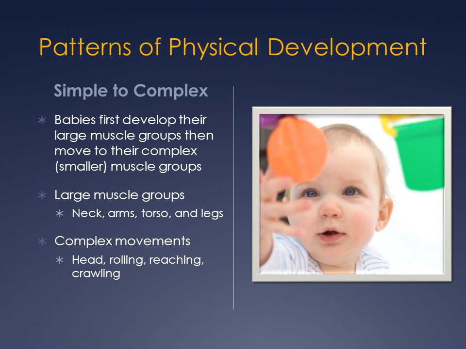 Patterns of Physical Development Simple to Complex  Babies first develop their large muscle groups then move to their complex (smaller) muscle groups