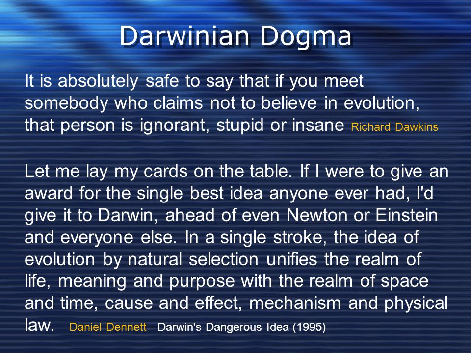 Darwinian Dogma It is absolutely safe to say that if you meet somebody who claims not to believe in evolution, that person is ignorant, stupid or insa