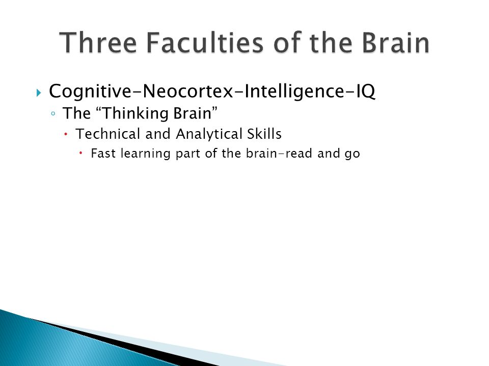  Cognitive-Neocortex-Intelligence-IQ ◦ The Thinking Brain  Technical and Analytical Skills  Fast learning part of the brain-read and go  Affective-Limbic-Emotional-EQ ◦ The Feeling Brain  Behaviors and habits learned early in life  Slow learning part of the brain-practice and repetition