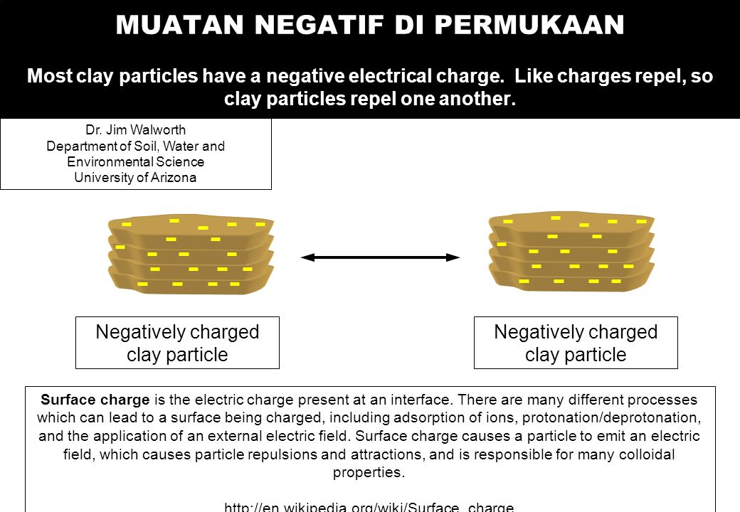 MUATAN NEGATIF DI PERMUKAAN Most clay particles have a negative electrical charge. Like charges repel, so clay particles repel one another. Negatively