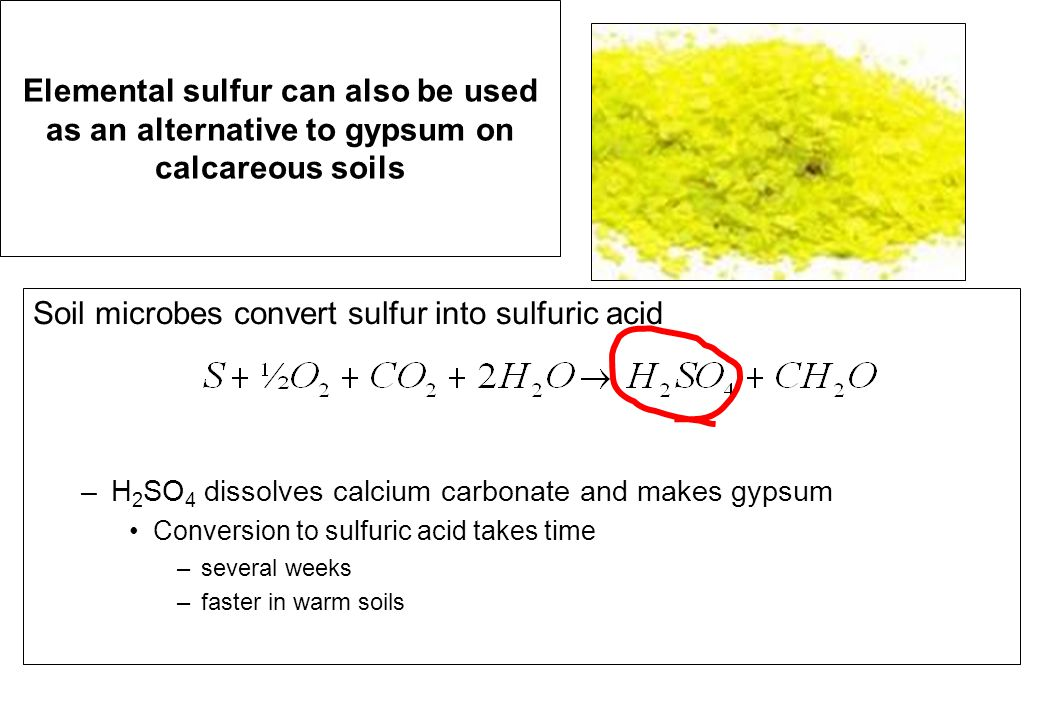 Elemental sulfur can also be used as an alternative to gypsum on calcareous soils Soil microbes convert sulfur into sulfuric acid –H 2 SO 4 dissolves calcium carbonate and makes gypsum Conversion to sulfuric acid takes time –several weeks –faster in warm soils