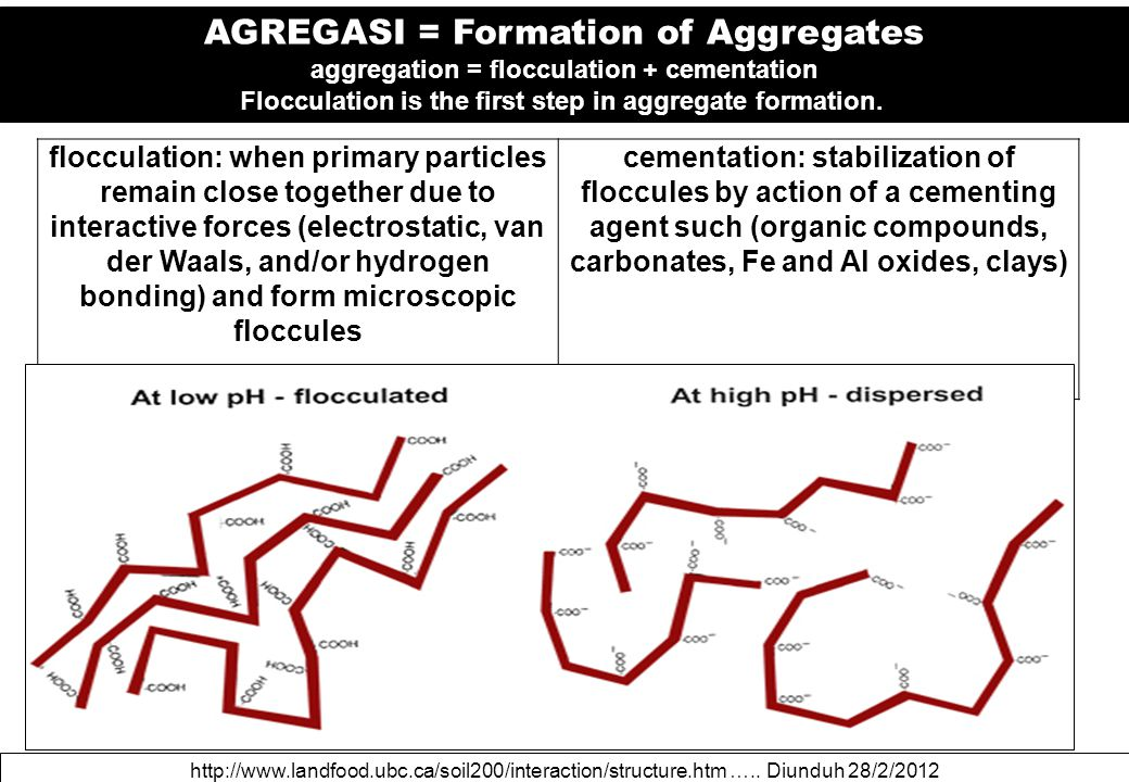 http://www.landfood.ubc.ca/soil200/interaction/structure.htm ….. Diunduh 28/2/2012 AGREGASI = Formation of Aggregates aggregation = flocculation + cem