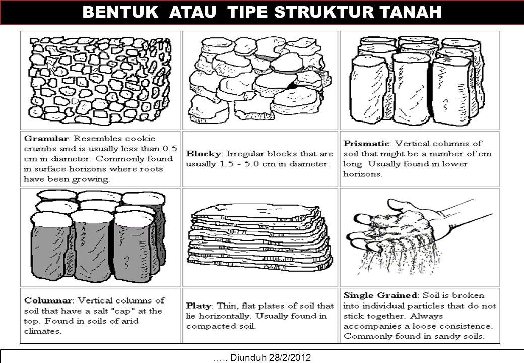 ….. Diunduh 28/2/2012 BENTUK ATAU TIPE STRUKTUR TANAH