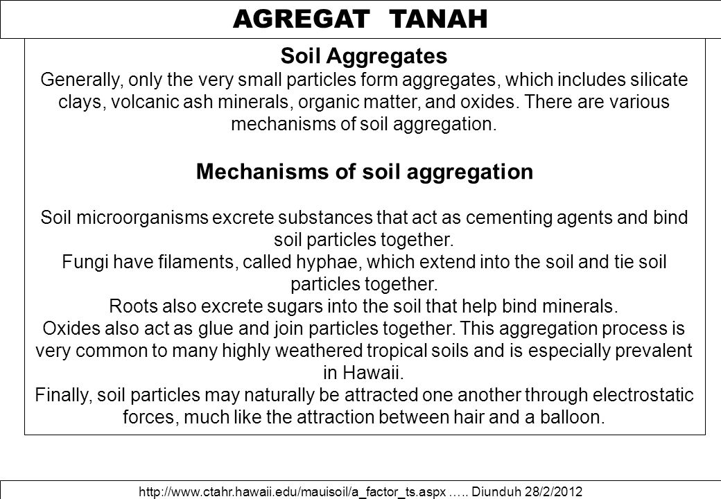 AGREGAT TANAH http://www.ctahr.hawaii.edu/mauisoil/a_factor_ts.aspx ….. Diunduh 28/2/2012 Soil Aggregates Generally, only the very small particles for