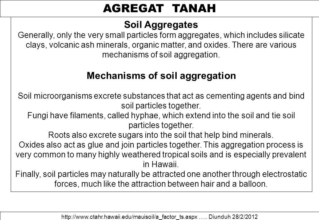 AGREGAT TANAH http://www.ctahr.hawaii.edu/mauisoil/a_factor_ts.aspx …..