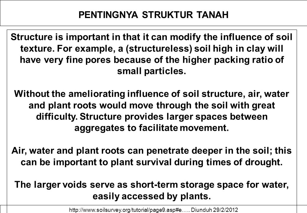 PENTINGNYA STRUKTUR TANAH Structure is important in that it can modify the influence of soil texture. For example, a (structureless) soil high in clay