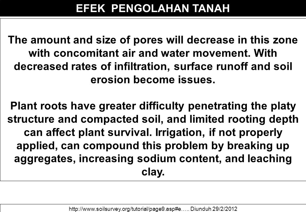 EFEK PENGOLAHAN TANAH The amount and size of pores will decrease in this zone with concomitant air and water movement. With decreased rates of infiltr