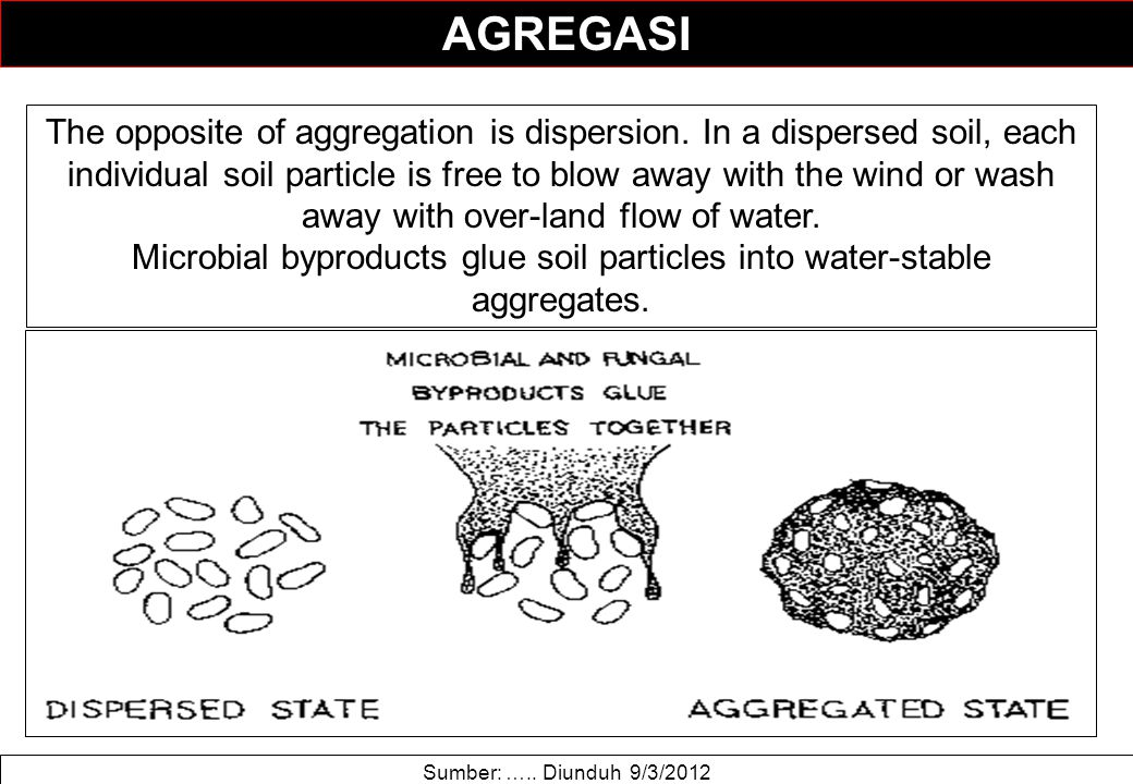 AGREGASI Sumber: ….. Diunduh 9/3/2012 The opposite of aggregation is dispersion. In a dispersed soil, each individual soil particle is free to blow aw