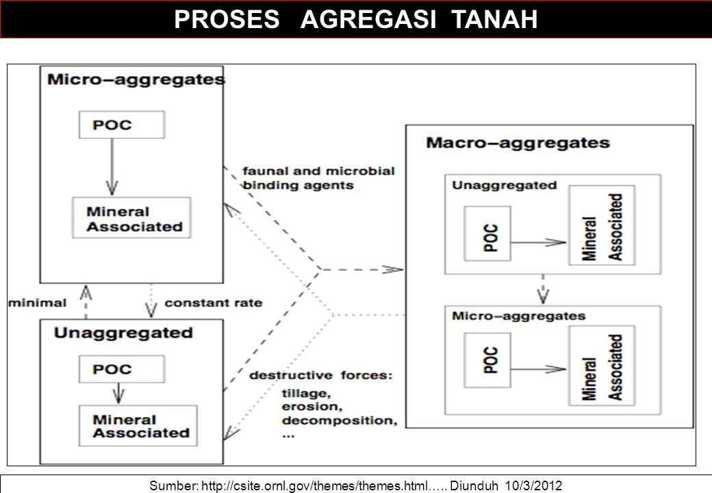 Sumber: http://csite.ornl.gov/themes/themes.html….. Diunduh 10/3/2012 PROSES AGREGASI TANAH
