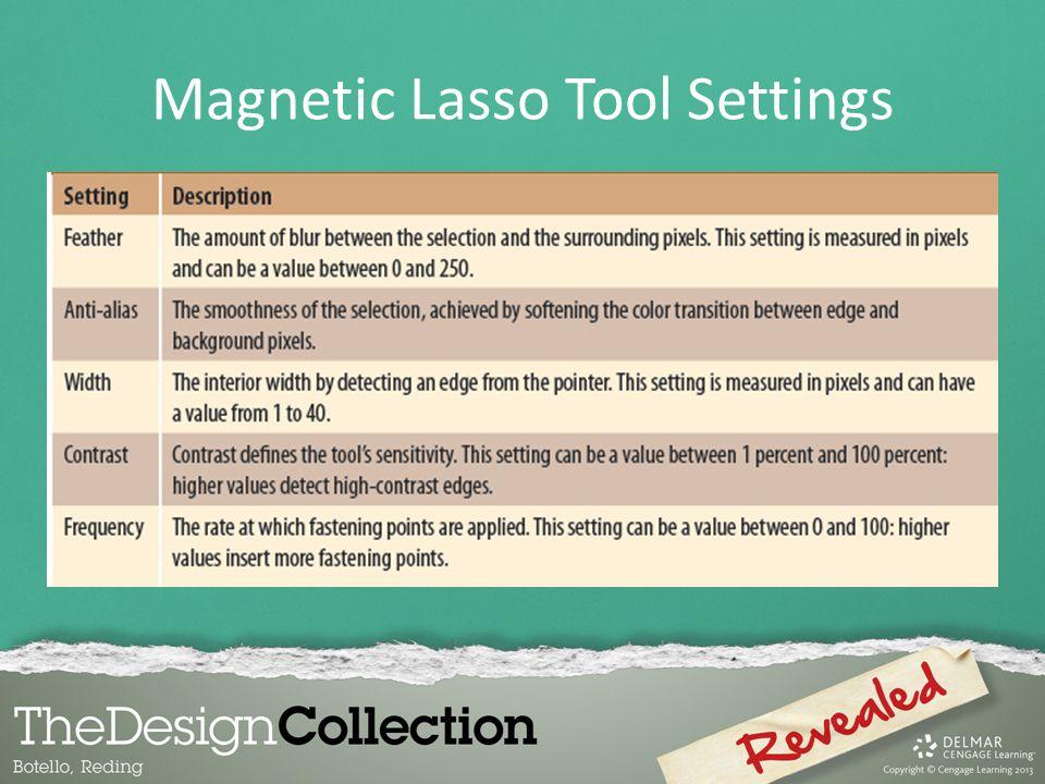 Magnetic Lasso Tool Settings