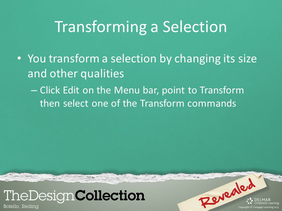 Transforming a Selection You transform a selection by changing its size and other qualities – Click Edit on the Menu bar, point to Transform then select one of the Transform commands