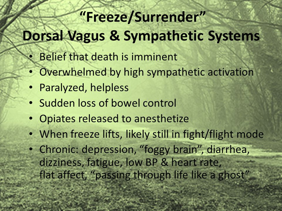 """""""Freeze/Surrender"""" Dorsal Vagus & Sympathetic Systems Belief that death is imminent Overwhelmed by high sympathetic activation Paralyzed, helpless Sud"""