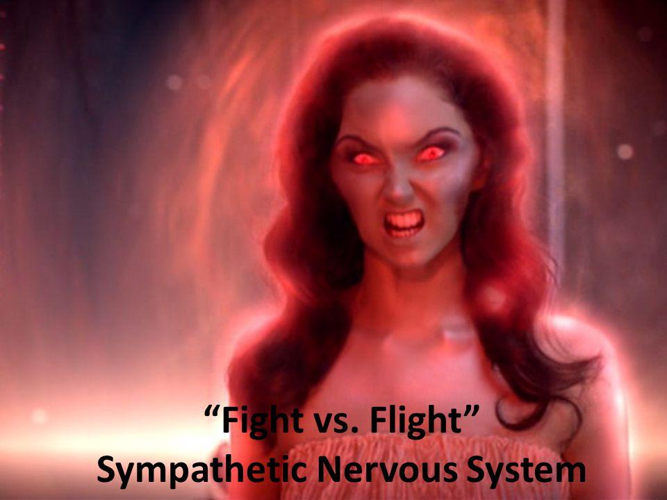 Fight vs. Flight Sympathetic Nervous System