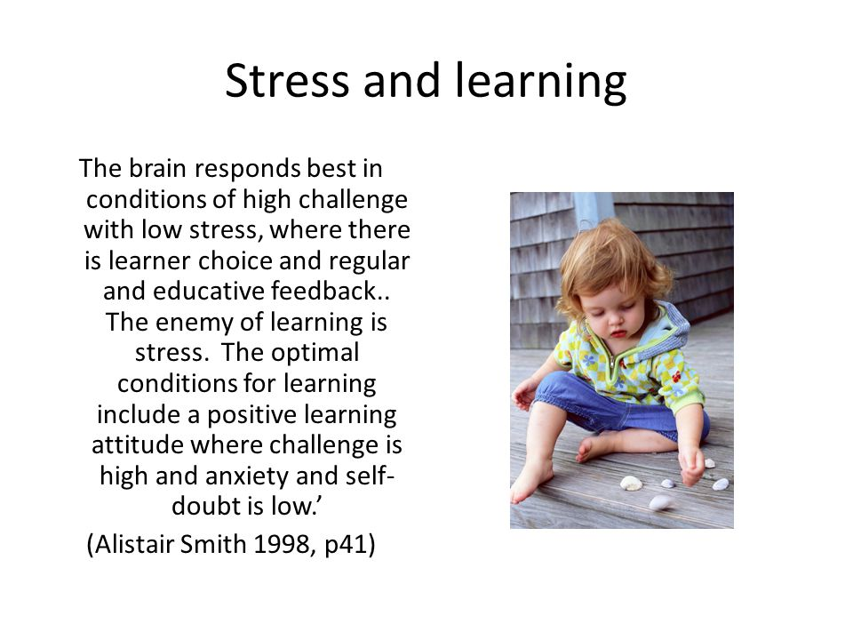 Stress and learning The brain responds best in conditions of high challenge with low stress, where there is learner choice and regular and educative feedback..