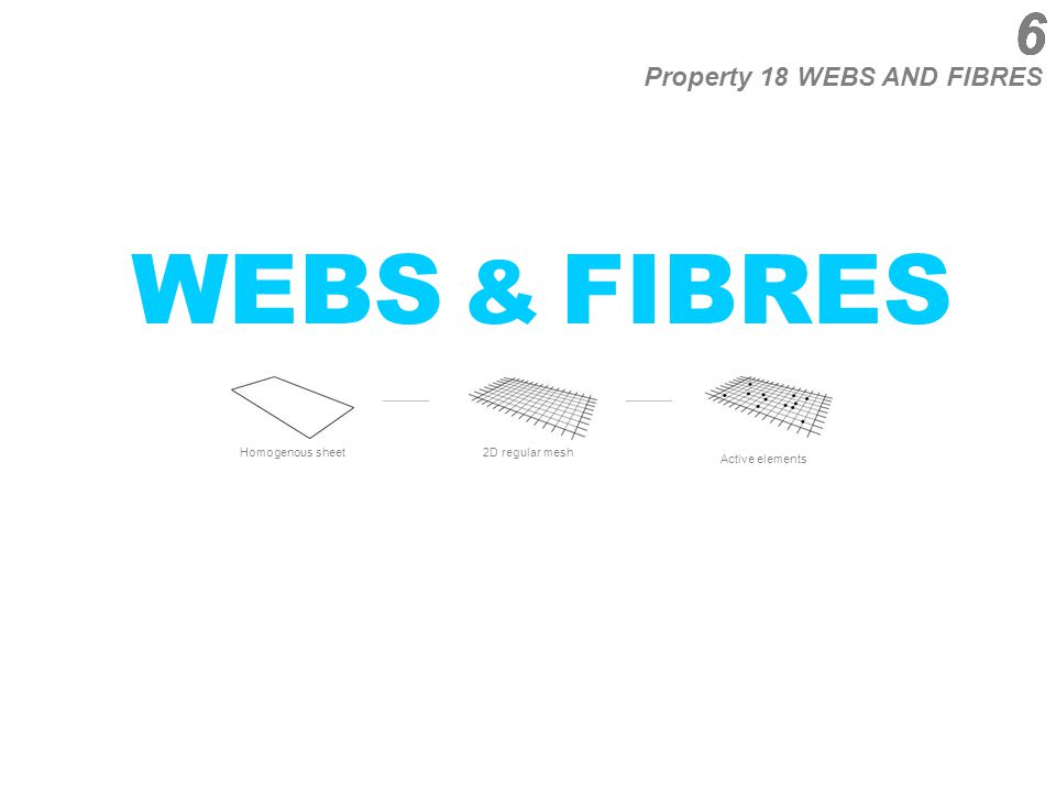 6 WEBS & FIBRES Property 18 WEBS AND FIBRES Homogenous sheet 2D regular mesh Active elements 6