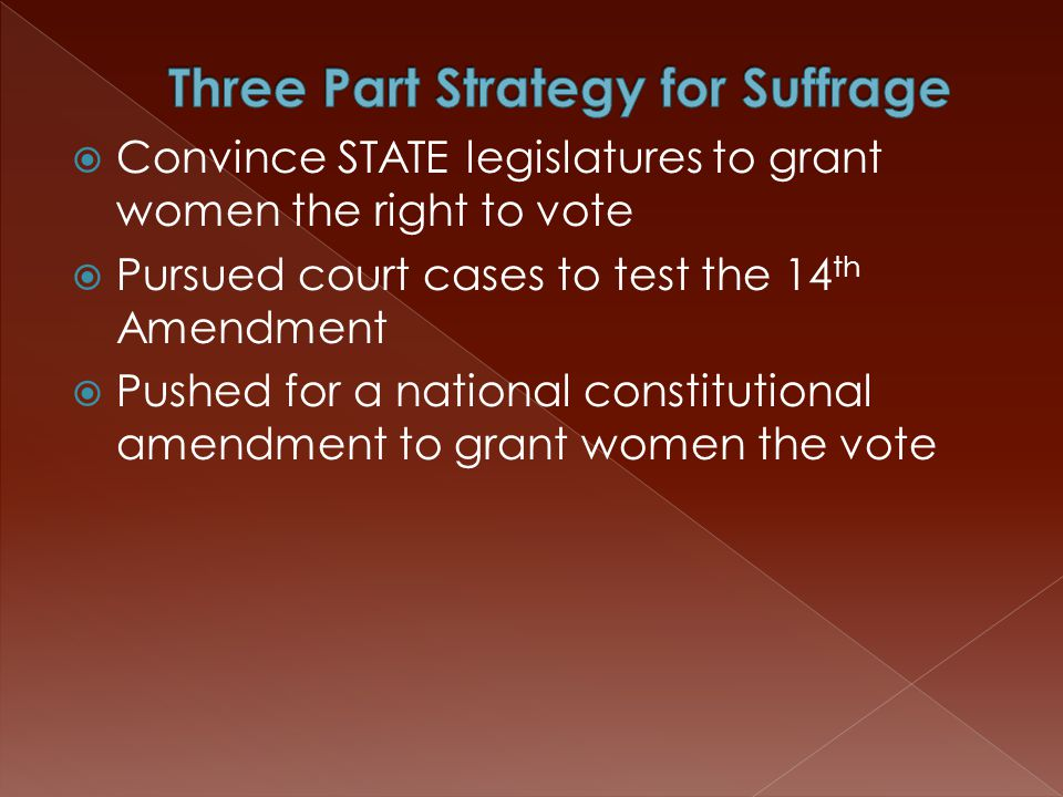  Convince STATE legislatures to grant women the right to vote  Pursued court cases to test the 14 th Amendment  Pushed for a national constitutiona
