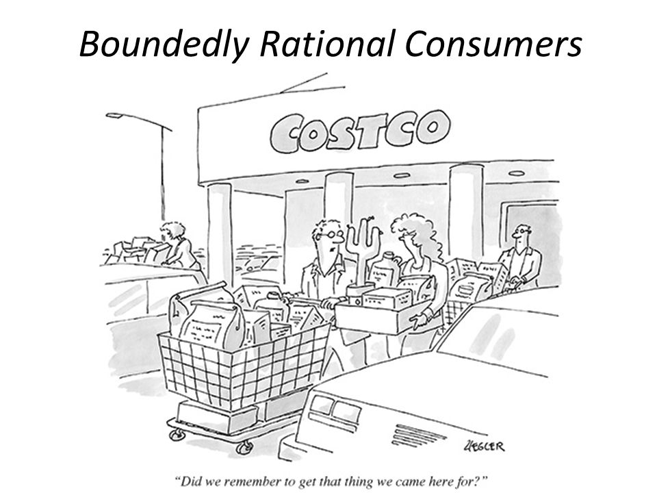 Boundedly Rational Consumers