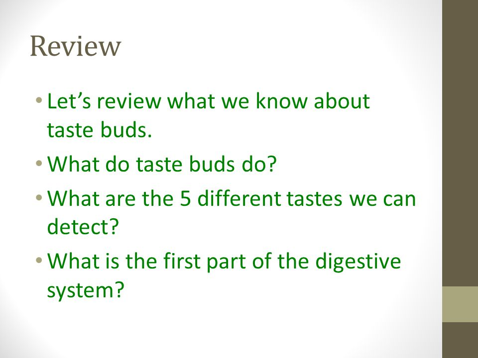 Review Let's review what we know about taste buds.