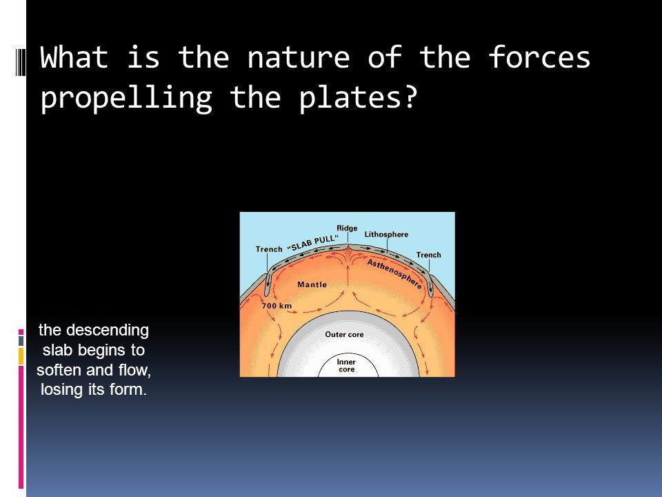 Magnetic Striping & Polar Reversal