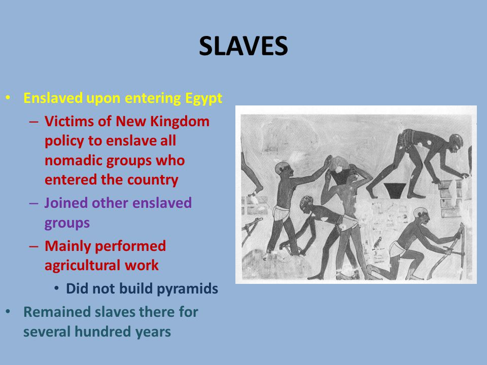 SLAVES Enslaved upon entering Egypt – Victims of New Kingdom policy to enslave all nomadic groups who entered the country – Joined other enslaved groups – Mainly performed agricultural work Did not build pyramids Remained slaves there for several hundred years