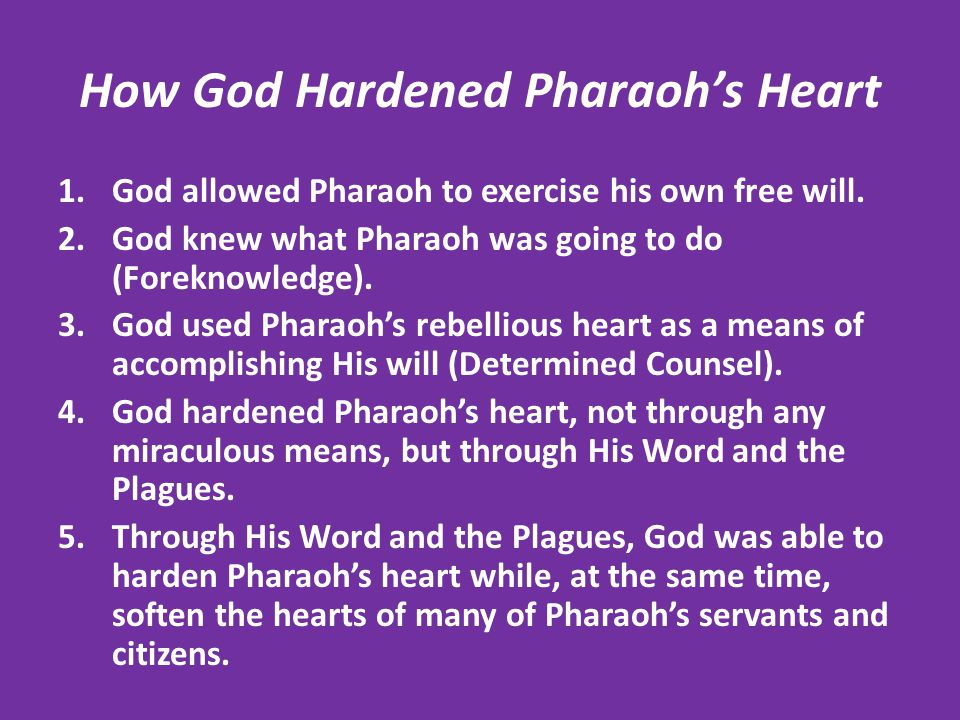How God Hardened Pharaoh's Heart 1.God allowed Pharaoh to exercise his own free will. 2.God knew what Pharaoh was going to do (Foreknowledge). 3.God u