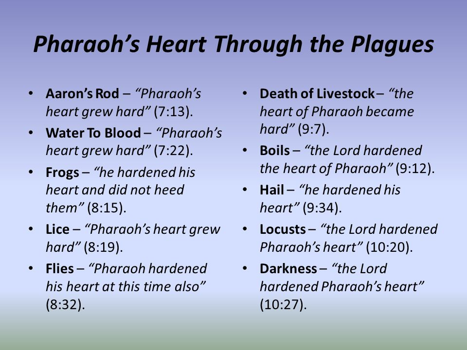 Pharaoh's Heart Through the Plagues Aaron's Rod – Pharaoh's heart grew hard (7:13).