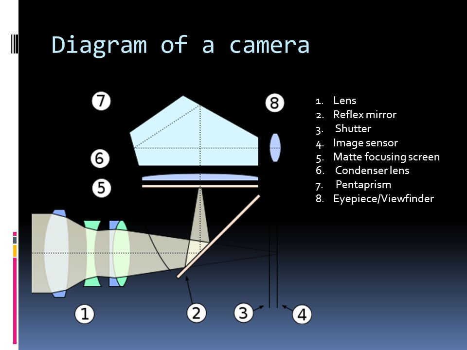Diagram of a camera 1.Lens 2.Reflex mirror 3. Shutter 4.Image sensor 5.Matte focusing screen 6. Condenser lens 7. Pentaprism 8.Eyepiece/Viewfinder