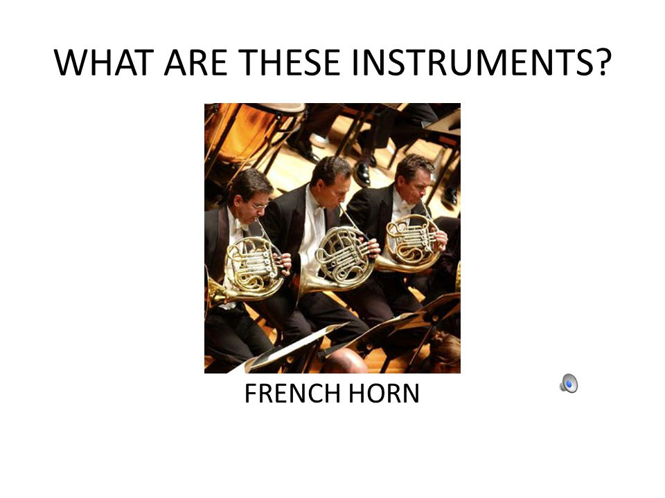 WHAT ARE THESE INSTRUMENTS? FRENCH HORN