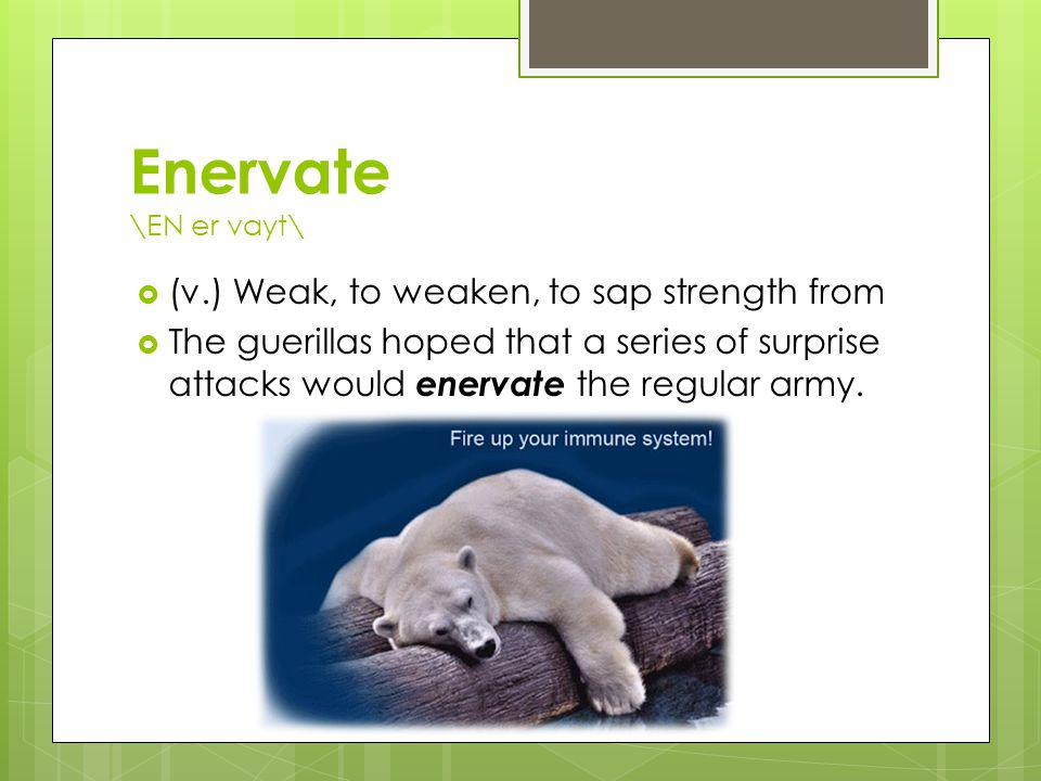 Enervate \EN er vayt\  (v.) Weak, to weaken, to sap strength from  The guerillas hoped that a series of surprise attacks would enervate the regular army.