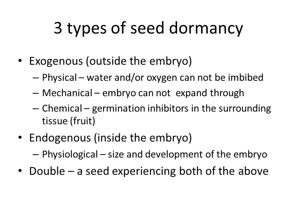 3 types of seed dormancy Exogenous (outside the embryo) – Physical – water and/or oxygen can not be imbibed – Mechanical – embryo can not expand through – Chemical – germination inhibitors in the surrounding tissue (fruit) Endogenous (inside the embryo) – Physiological – size and development of the embryo Double – a seed experiencing both of the above