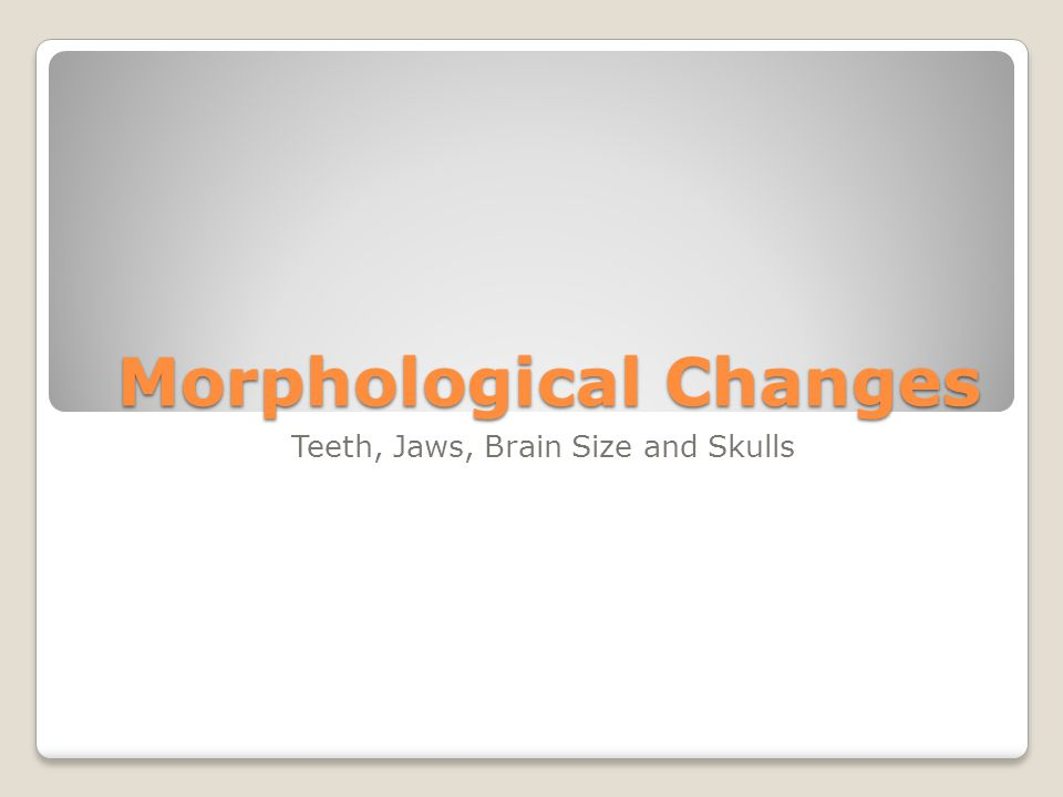 Morphological Changes Teeth, Jaws, Brain Size and Skulls