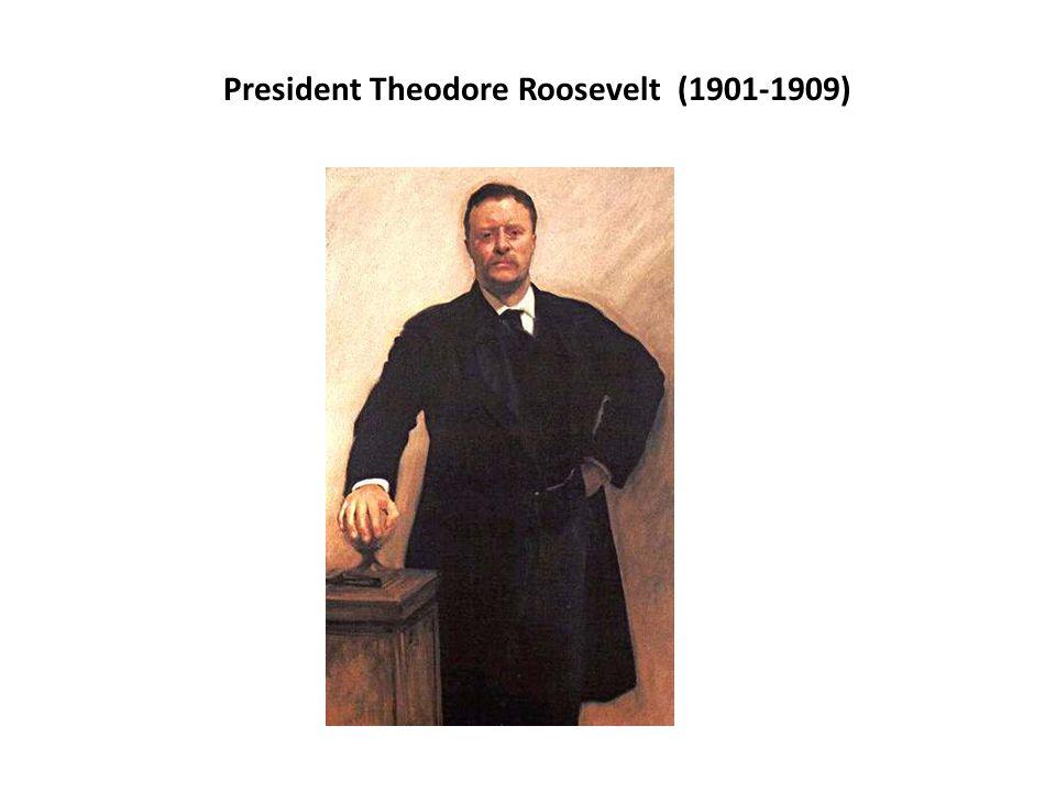 President Theodore Roosevelt (1901-1909)