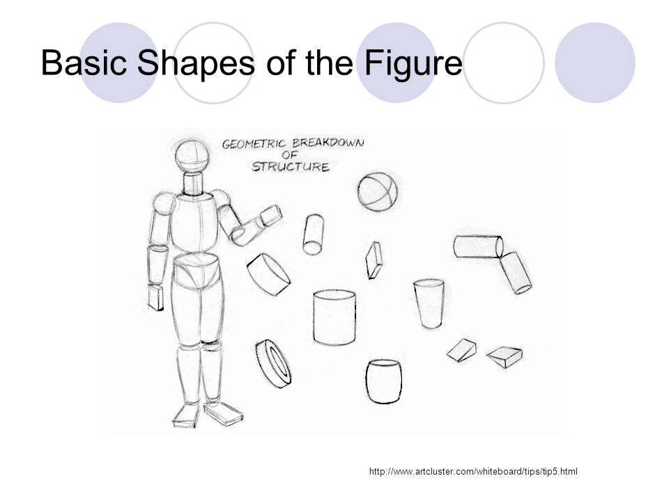 Basic Shapes of the Figure http://www.artcluster.com/whiteboard/tips/tip5.html