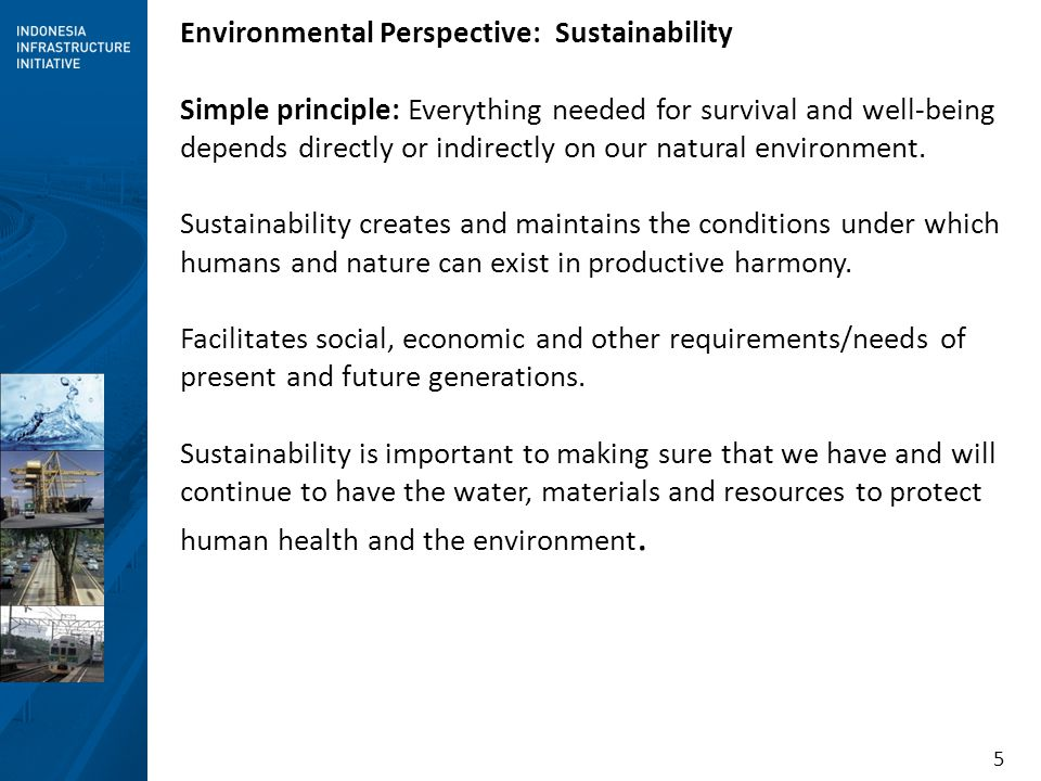 5 Environmental Perspective: Sustainability Simple principle: Everything needed for survival and well-being depends directly or indirectly on our natu