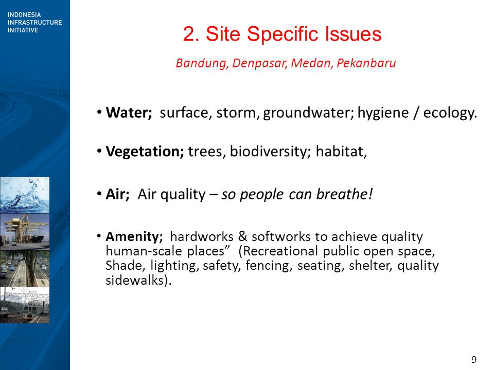 9 2. Site Specific Issues Water; surface, storm, groundwater; hygiene / ecology. Vegetation; trees, biodiversity; habitat, Amenity; hardworks & softwo