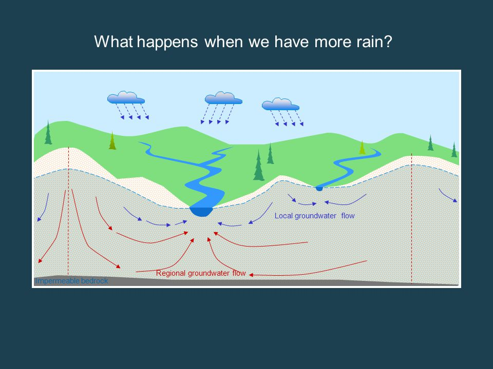 Impermeable bedrock Local groundwater flow Regional groundwater flow More infiltration Groundwater levels rise More water in rivers, lakes and streams What happens when we have more rain?