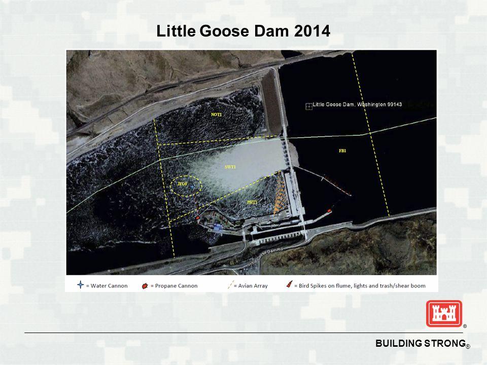Little Goose Dam 2014