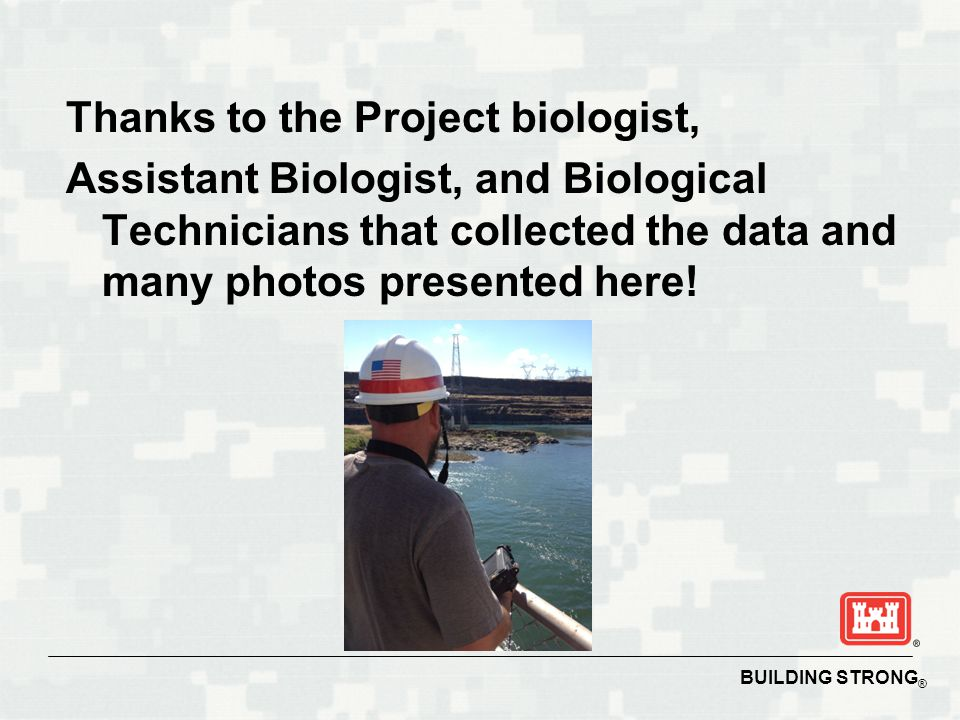BUILDING STRONG ® Thanks to the Project biologist, Assistant Biologist, and Biological Technicians that collected the data and many photos presented h