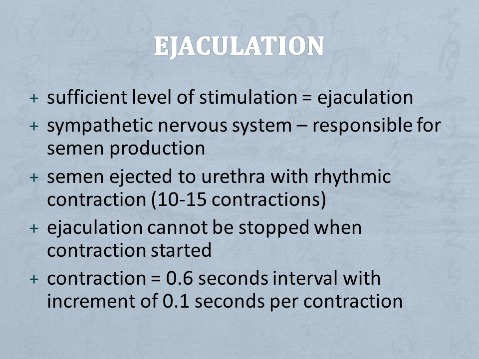 + sufficient level of stimulation = ejaculation + sympathetic nervous system – responsible for semen production + semen ejected to urethra with rhythmic contraction (10-15 contractions) + ejaculation cannot be stopped when contraction started + contraction = 0.6 seconds interval with increment of 0.1 seconds per contraction