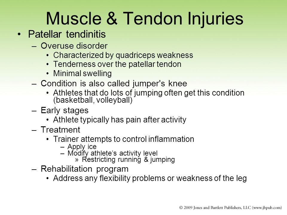 Muscle & Tendon Injuries Patellar tendinitis –Overuse disorder Characterized by quadriceps weakness Tenderness over the patellar tendon Minimal swelling –Condition is also called jumper s knee Athletes that do lots of jumping often get this condition (basketball, volleyball) –Early stages Athlete typically has pain after activity –Treatment Trainer attempts to control inflammation –Apply ice –Modify athlete's activity level »Restricting running & jumping –Rehabilitation program Address any flexibility problems or weakness of the leg