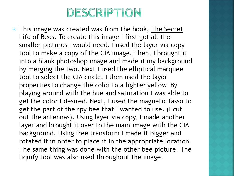  This image was created was from the book, The Secret Life of Bees.