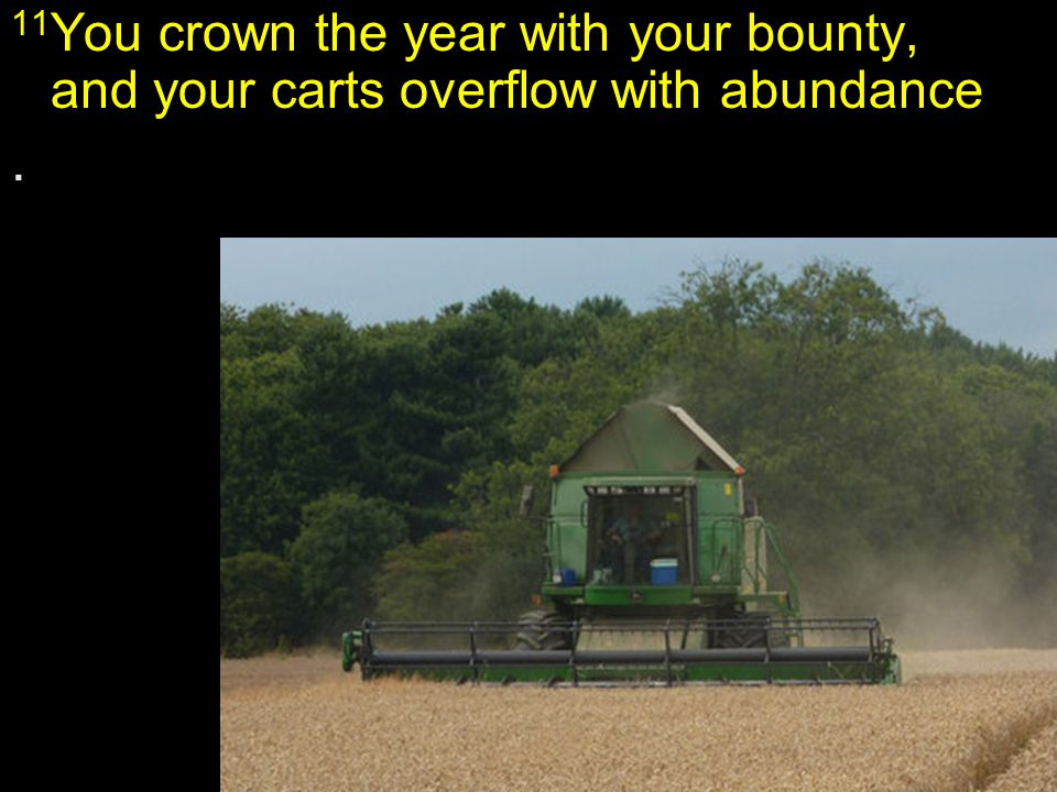 11 You crown the year with your bounty, and your carts overflow with abundance..
